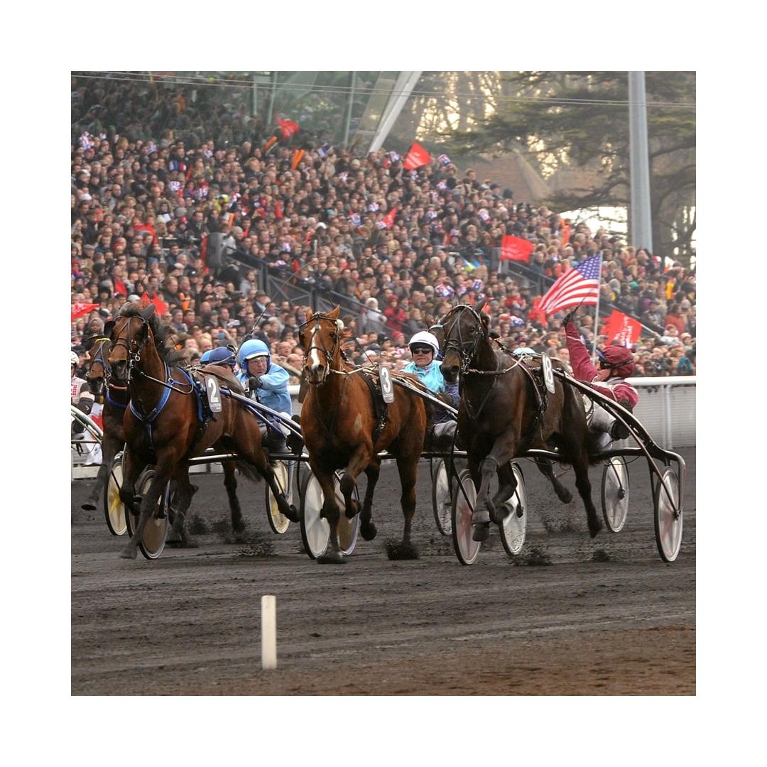 Fantasy Horse Racing Scoring