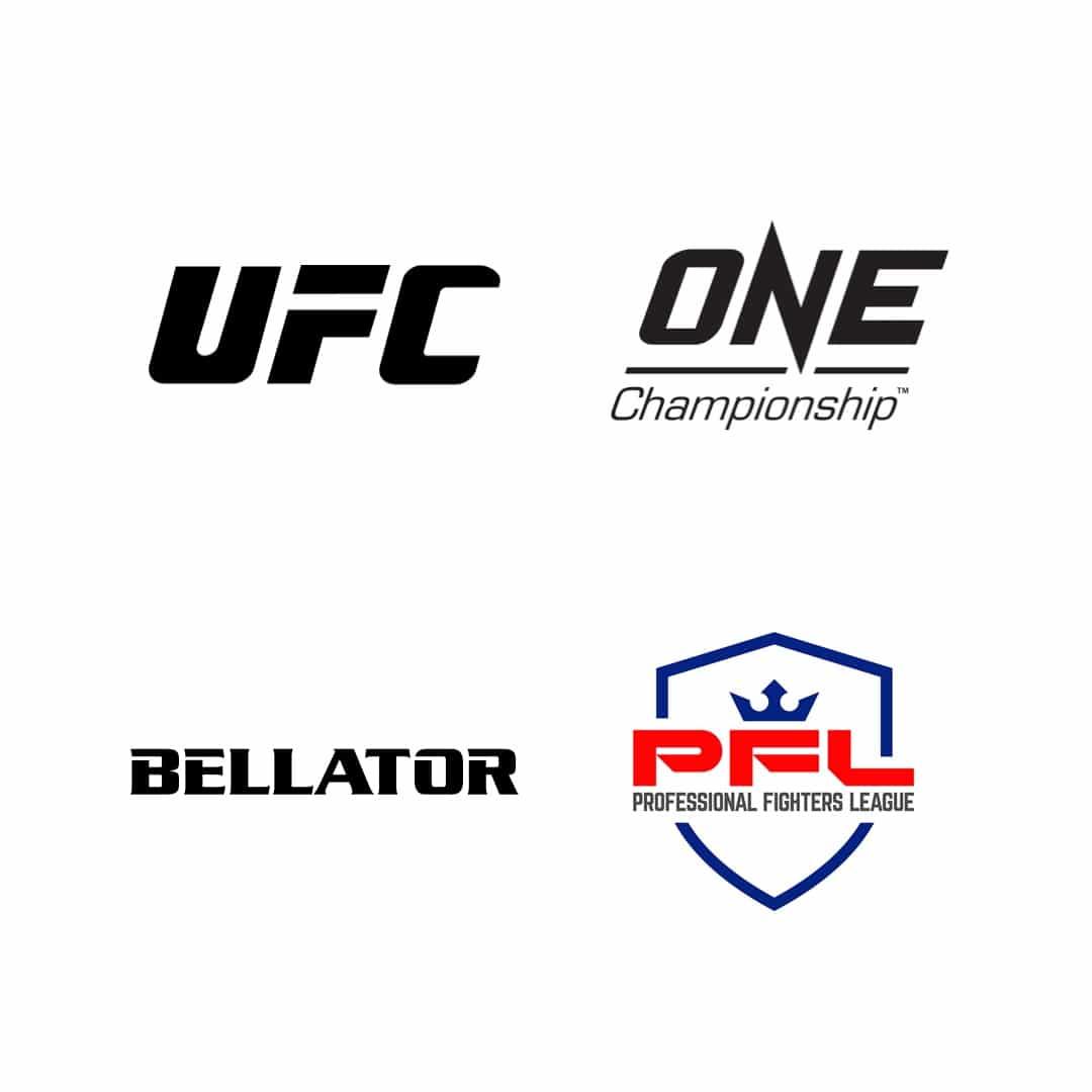 Fantasy MMA organizations